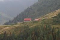 Malga Collina Grande 3