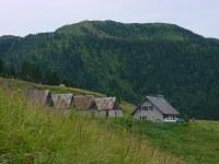 Meledis Alta 3