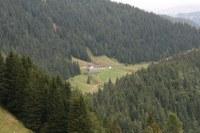 Malga Valbertat Alta 1
