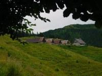 Meledis Alta 2