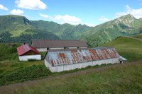 Lodin Alta 2