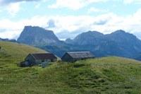 Lodin Alta 5