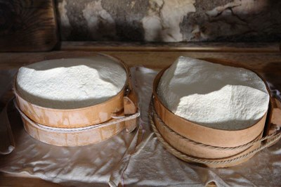 15) Formatura del formaggio.JPG