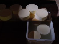 16) Salatora in salamoia.JPG
