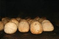 Ricotta affumicata 3.jpg