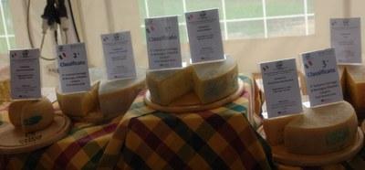 I formaggi vincitori